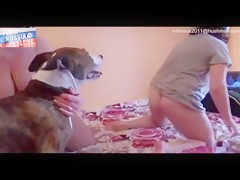 horny girl rape dog