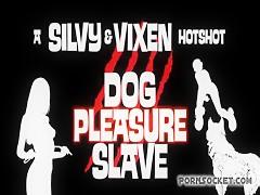 vintal dog sex