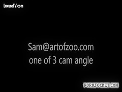 Sam art of zoo desde 1 angulo