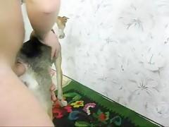 Chico se folla la mascota de la familia