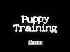 Entrenando al cachorro parte 1