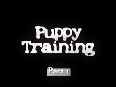 El perro aprende a follar