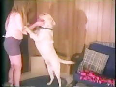 Black dog fucking girl
