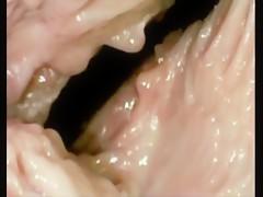 dentro de la vagina